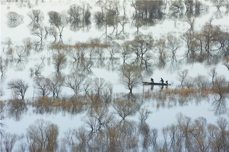 南湖湿地小景