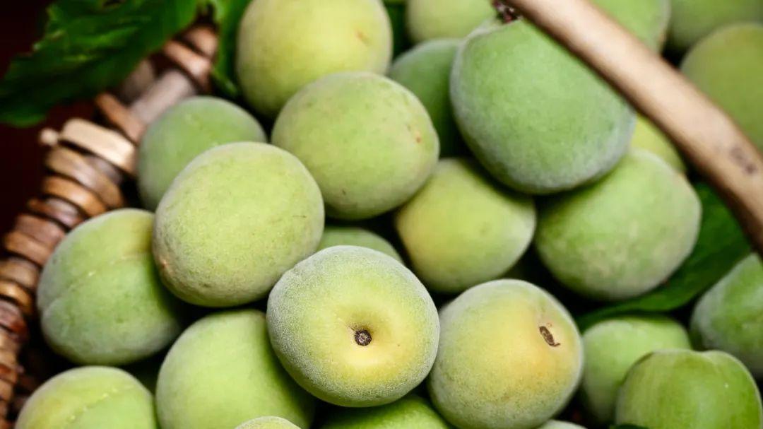 """▲ 苏州人在夏天讲究吃""""三鲜"""",图为""""地三鲜""""里的蚕豆与红苋菜,以及""""树三鲜""""里的梅子。"""