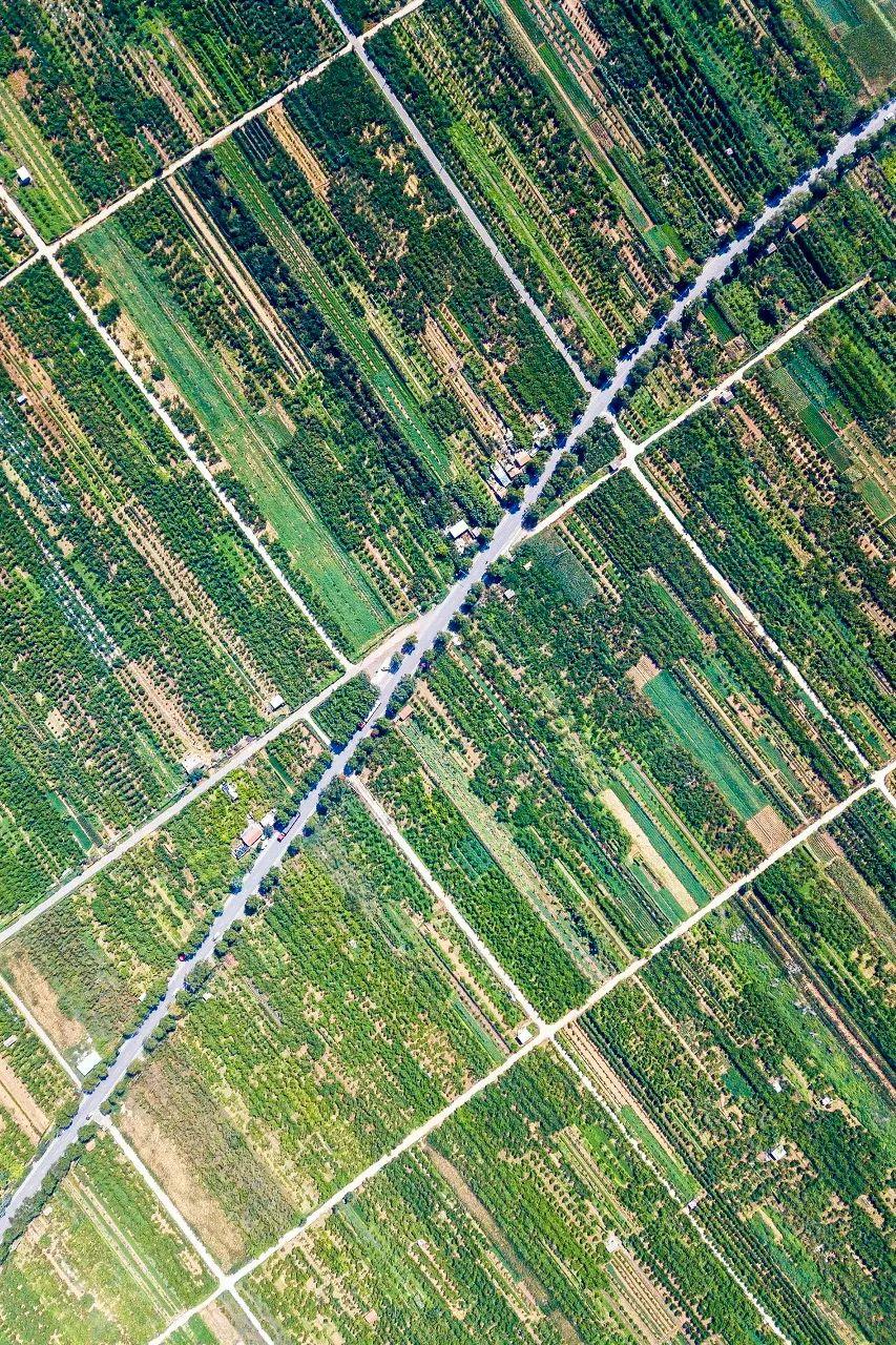 ▲ 平谷的万亩桃园。 摄影/范记乐善堂,图/图虫·创意