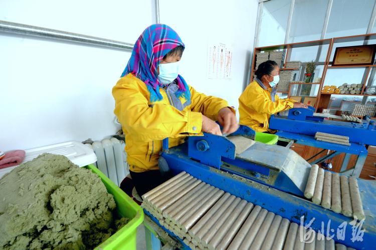 2021年6月29日,位于河北省康保县的河北祯艾生物科技有限公司员工在加工艾条。河北日报记者杜柏桦摄影报道