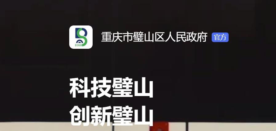 图 | 璧山区政府官网部分介绍(来源:璧山区政府官网)