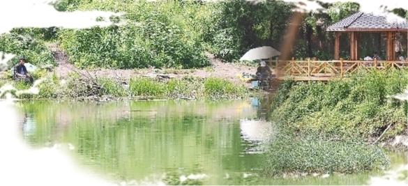 美丽的东湖公园内禁止钓鱼,但仍可看到有市民在垂钓