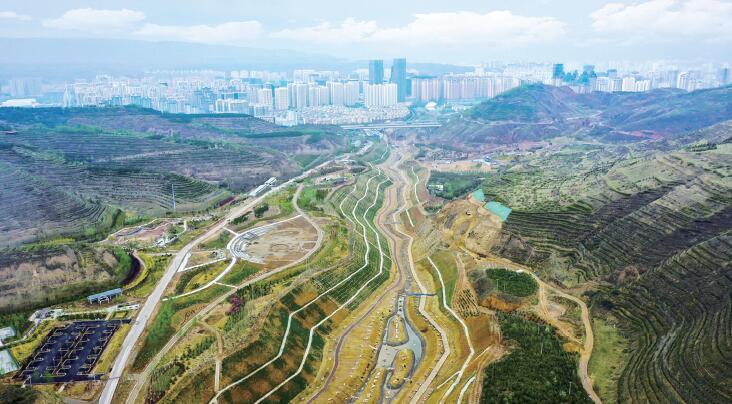推进廊道绿化 打造绿色家园