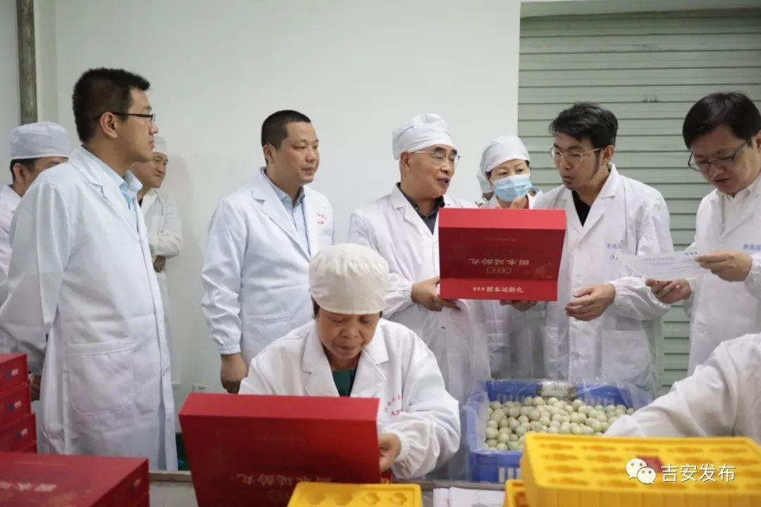 张伯礼院士一行考察大自然制药有限公司