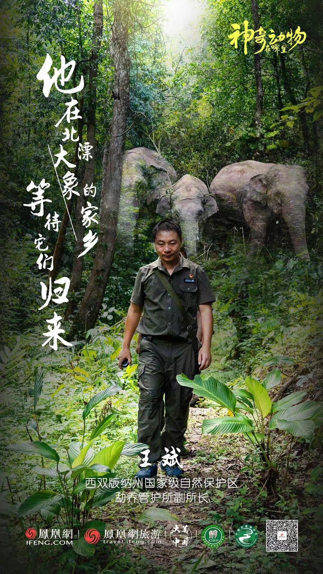 他在北漂大象的家乡等待它们归来