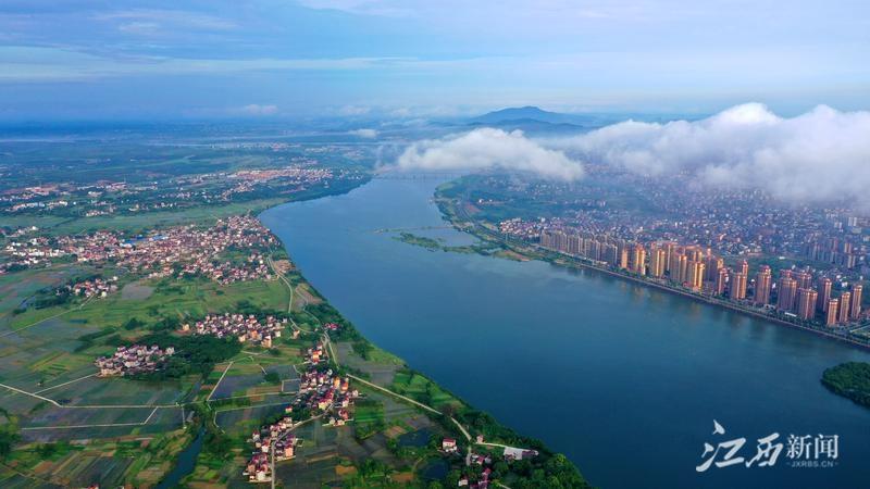 泰和:云雾缭绕景色美(图)