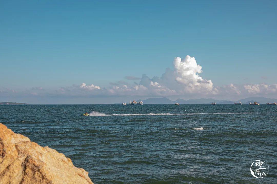 能看到鲸鱼的宝藏沙滩 早就红了!