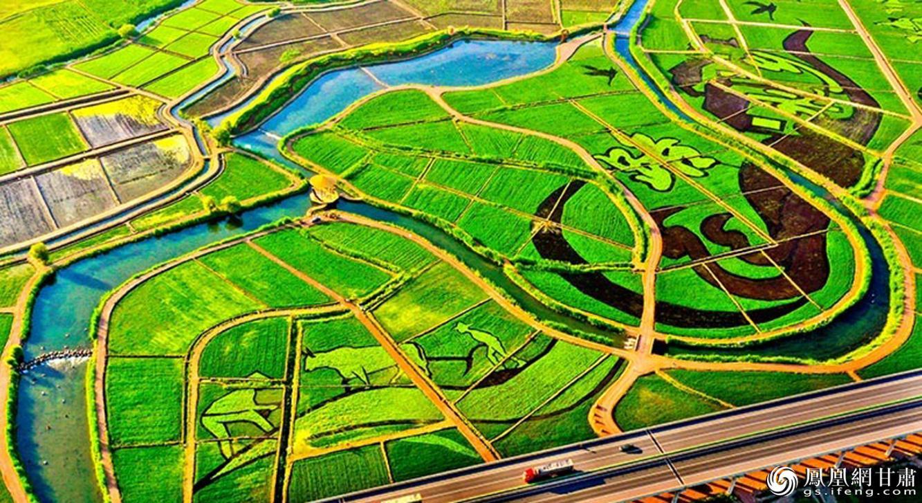 张掖市甘州区乌江镇新河田园综合体稻田景观区 张掖市委宣传部供图