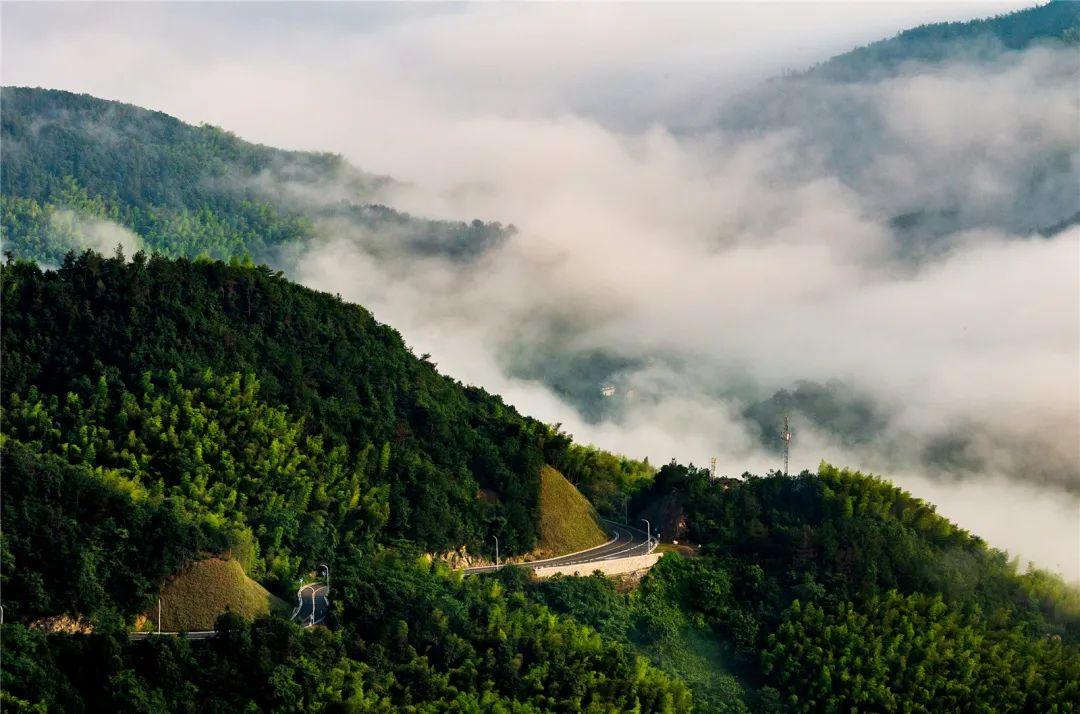 五百岗-会稽山山脉余脉