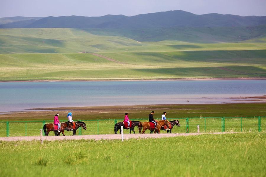 游客在山丹马场游玩,尽情享受草原美景。(翟继宗 摄)