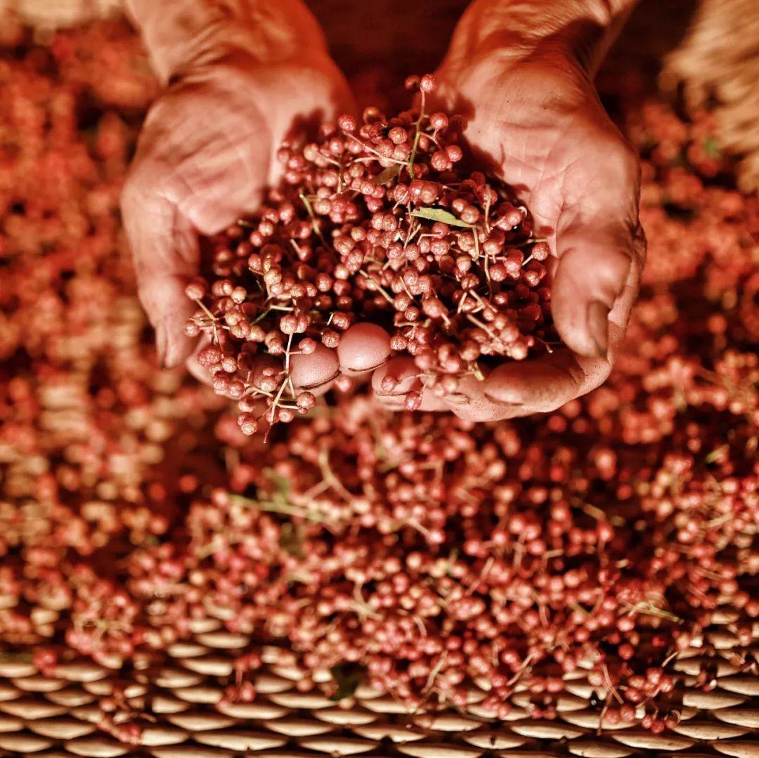 ▲ 花椒向来都是中国备受珍视的香料。图/视觉中国