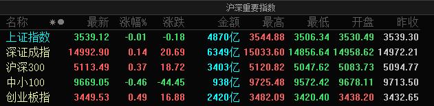 A股三大指数震荡整理:创业板指涨0.49% 中药股强势