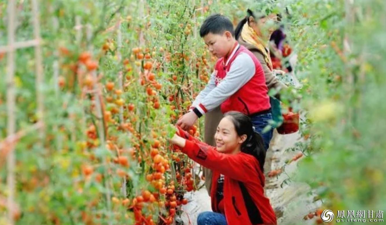 沁园春田园综合体项目位于兰州市榆中县和平镇高营村,让游客体验乡村休闲、农事采摘的乐趣。夏枫 摄