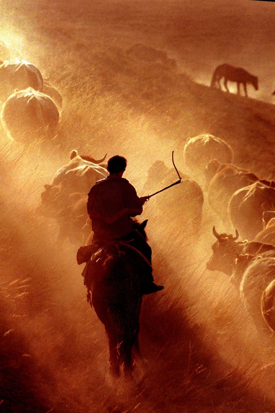 ▲ 塞外牧歌,流转了千年。摄影/赖宇宁