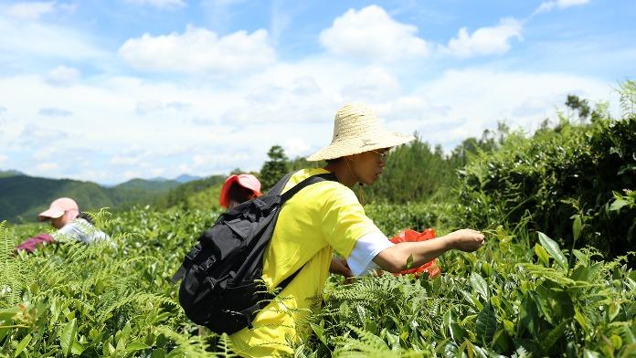 """江西科技学院开展2021年暑期""""三下乡""""社会实践活动"""
