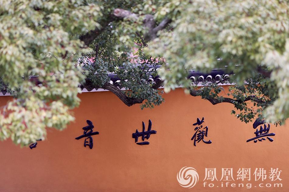浙江普陀山(图片来源:凤凰网佛教 摄影:寂戒法师)