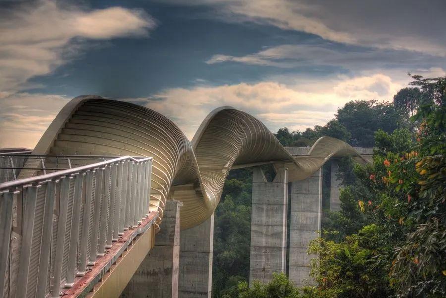 钢铁和巴劳木扭曲在一起,形成了壮观的亨德森波浪桥。 图源:pinterest