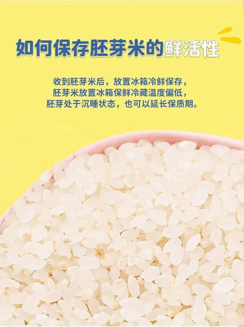 真的能发芽的胚芽米!给孩子主食换成它,营养翻N倍