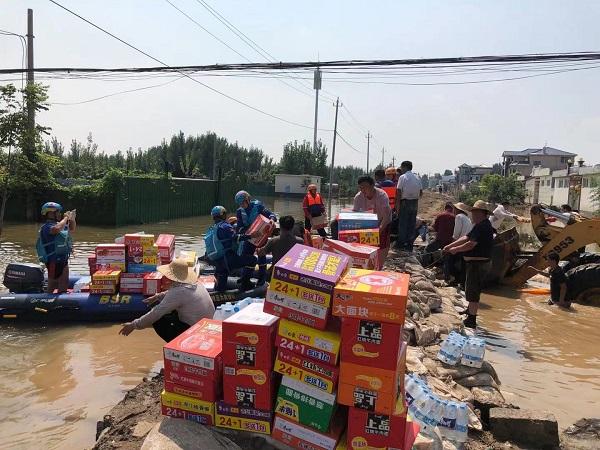 河南新乡一村停水停电 一群猪在土堤上游荡(图3)