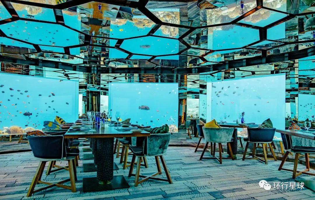 马尔代夫餐厅橱窗里都是海洋生物 图3:Ishan @seefromthesky/Unsplash
