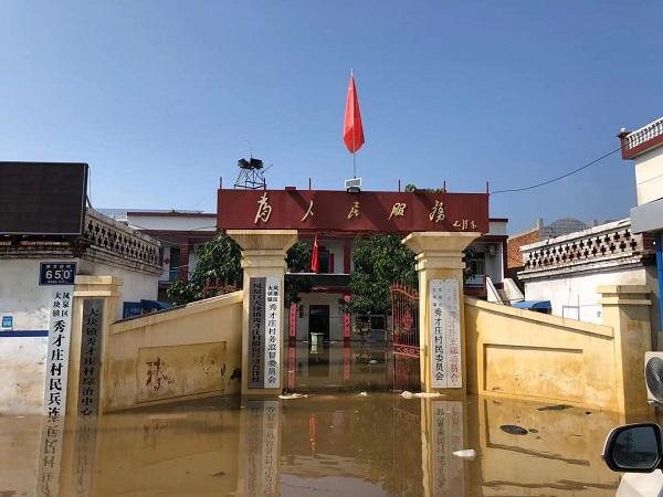 河南新乡一村停水停电 一群猪在土堤上游荡