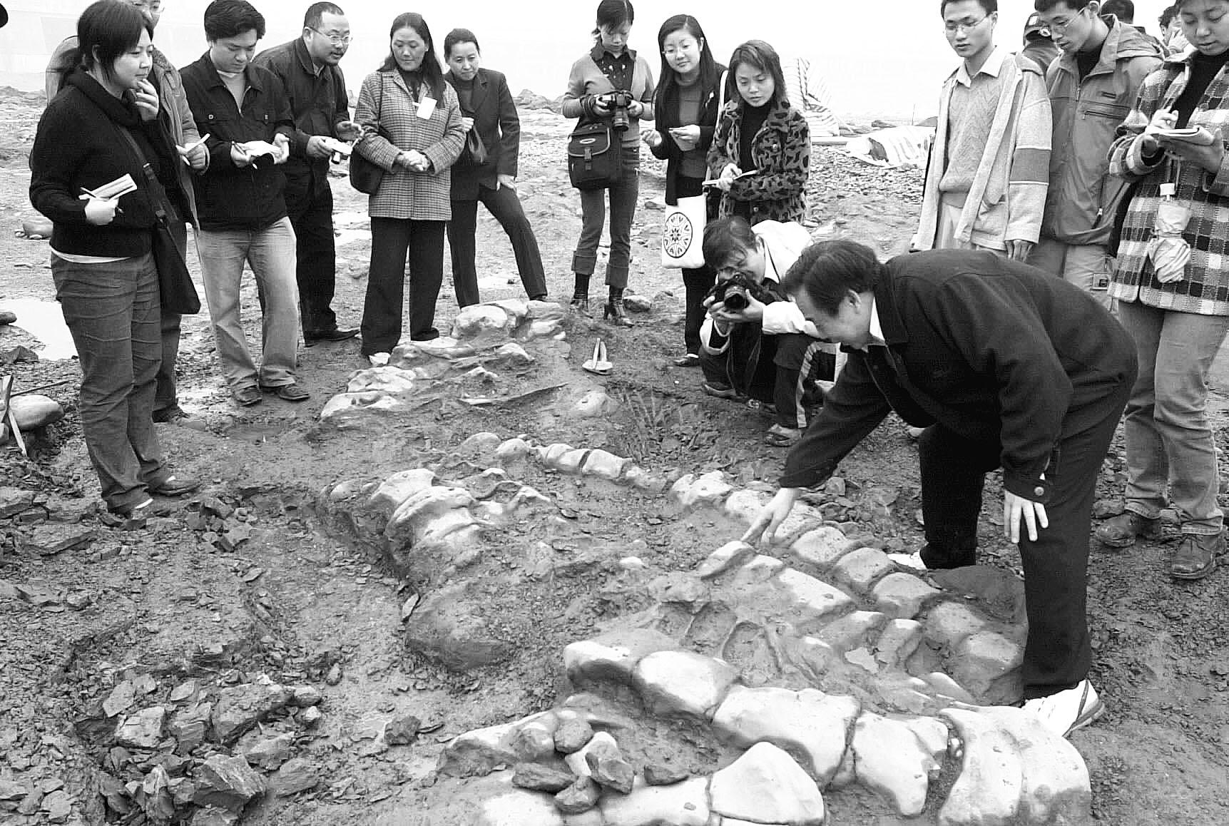 图注:在四川发现的马门溪龙化石,图片来自网络