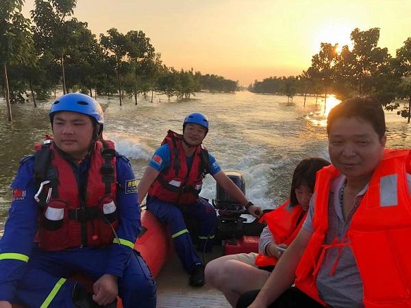 河南新乡一村停水停电 一群猪在土堤上游荡(图5)