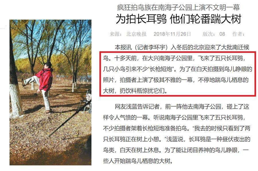 媒体报道不文明拍鸟行为。图源北京晚报