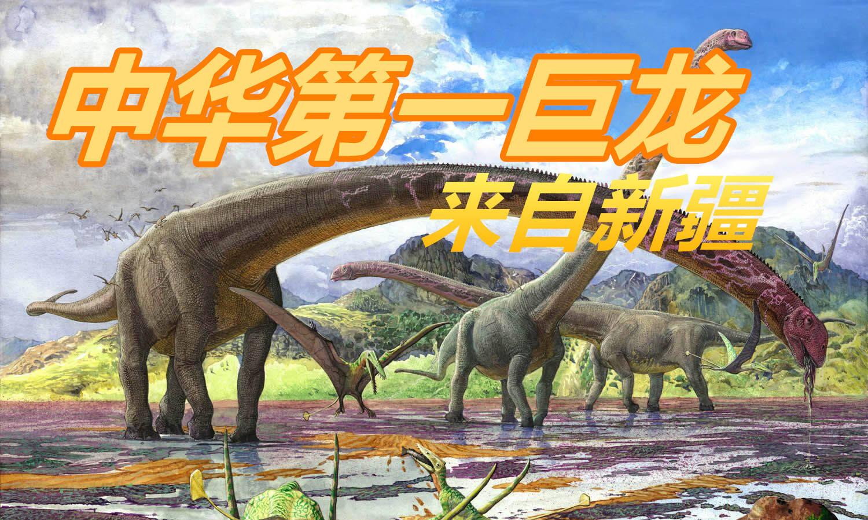 中国最大的恐龙来自新疆:长35米重80吨