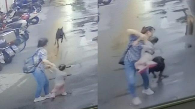 大狗来袭母亲一把提起女儿:希望对狗依法处置