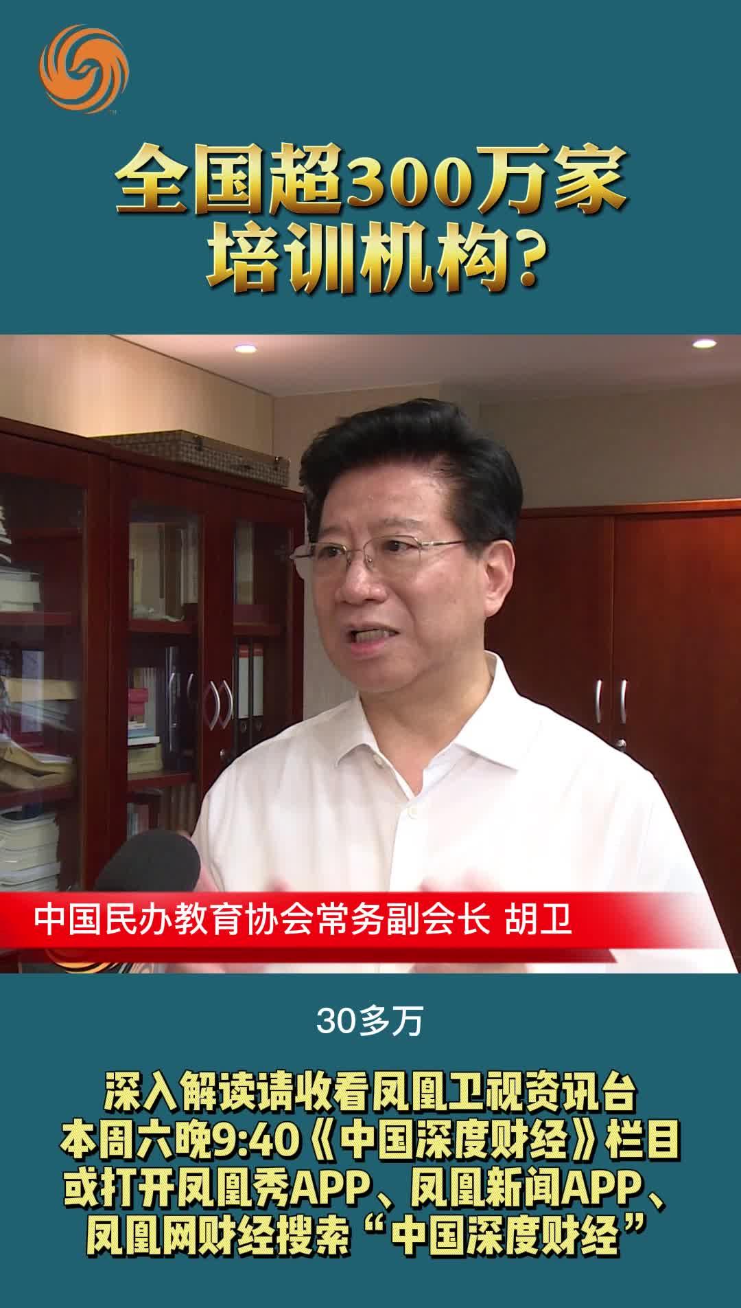 中国民办教育协会常务副会长 胡卫:全国超300万家培训机构?