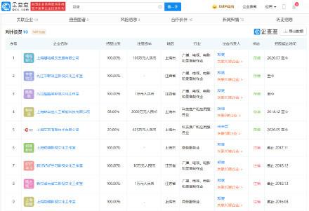鄭爽商業版圖僅剩5家 多項目股權被凍結
