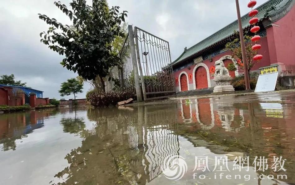 月共一轮,血浓于水:两岸佛子携手驰援河南水灾、疫情