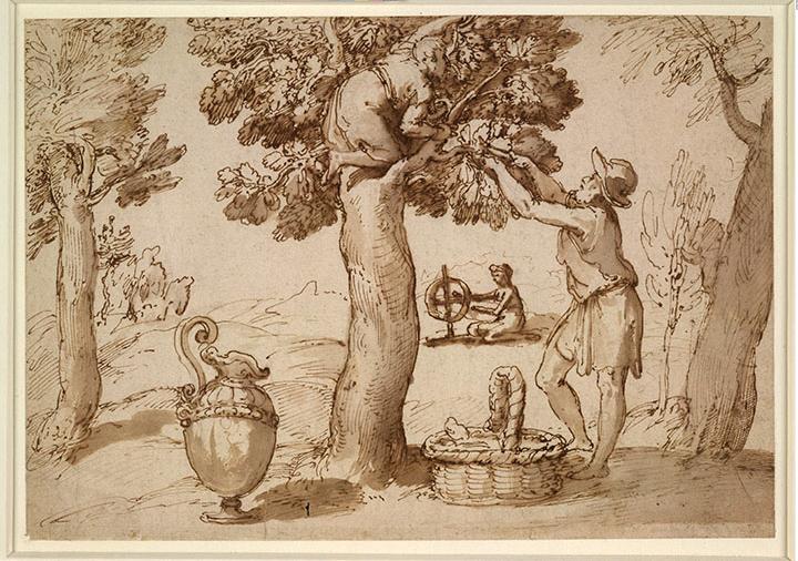 塔德奥·祖卡罗(1529至1566年)的画作《养蚕》(1564至1566年)