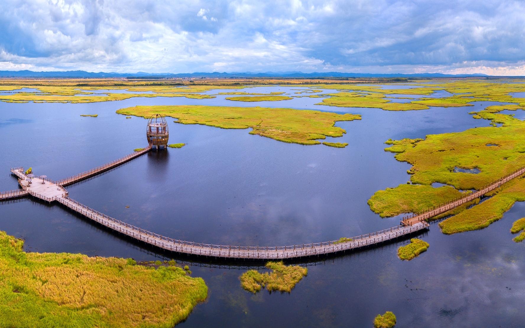 千鸟湖湿地