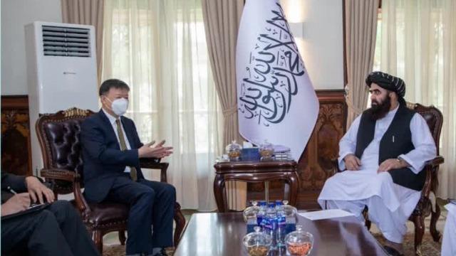 阿富汗代理外长:决不允许任何势力利用阿领土危害中国
