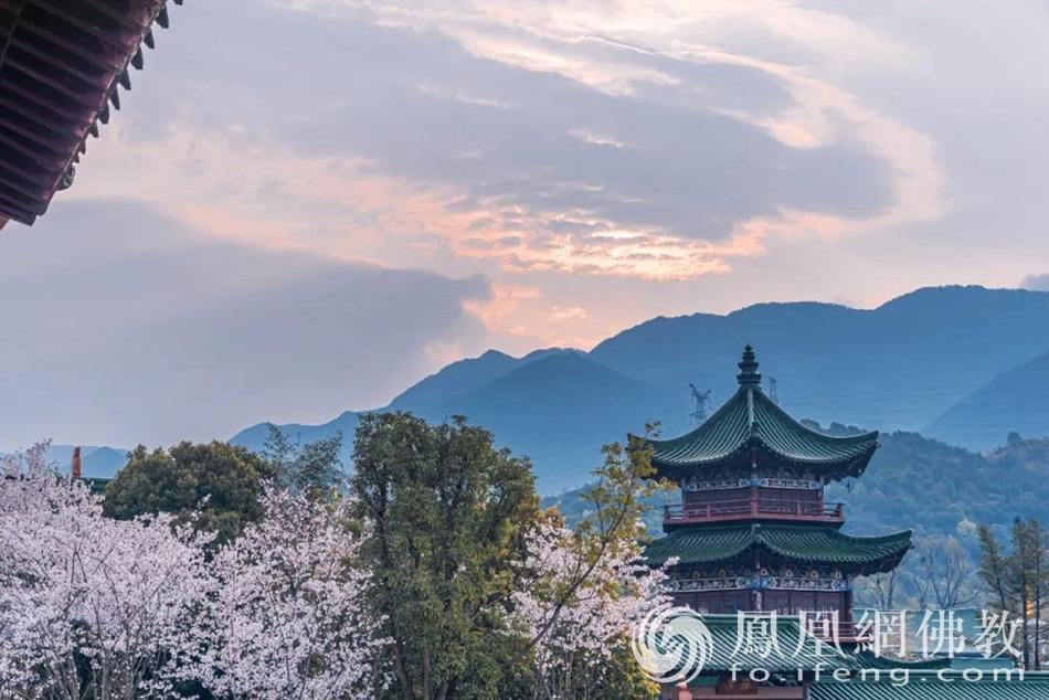 樱花开放的季节,抬眼可见庐山。(图片来源:凤凰网佛教)
