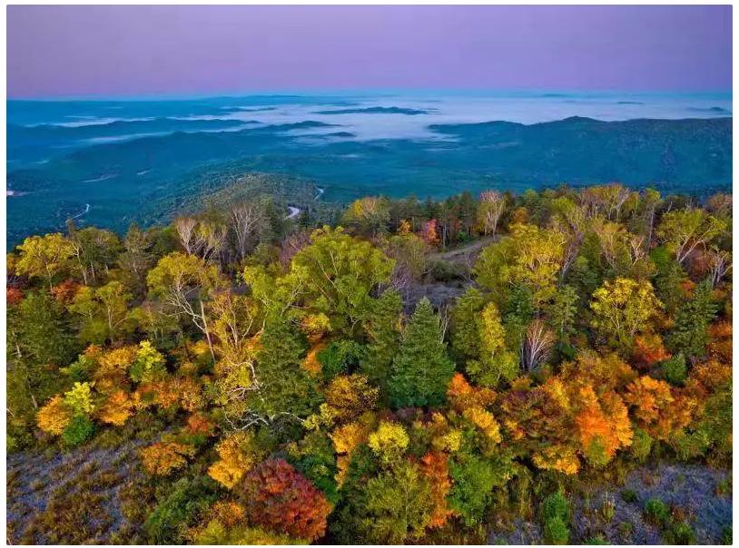 秋色最美还是长白山。