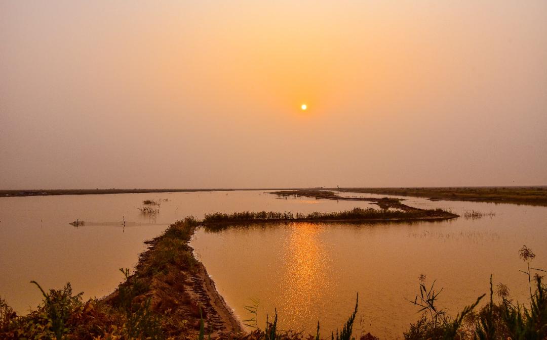 黄河入海口的日出