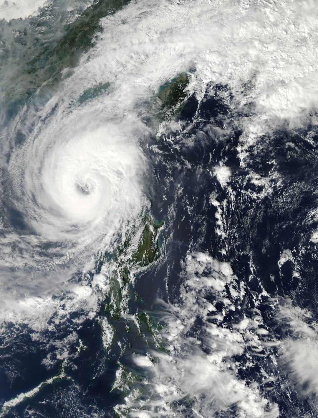 在被臺風送走之前,我想知道它到底是個啥?
