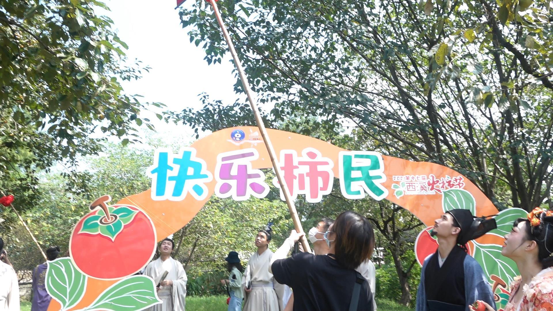 游客们在采摘柿子 尚天宇 摄