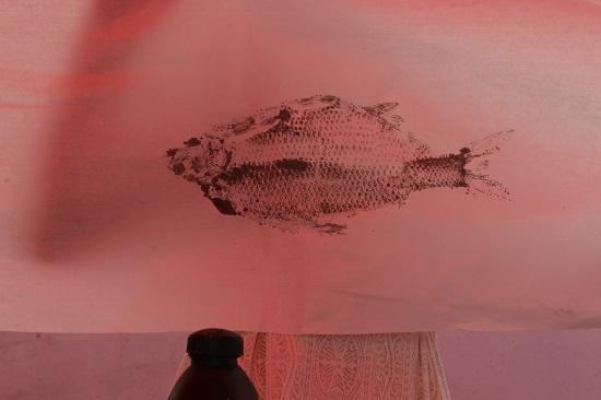 水墨画一样的鱼拓