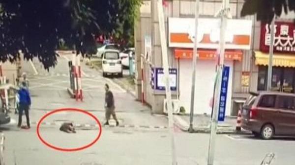 """政能亮丨城管暴力拎摔老人不能""""罚酒三杯""""了事"""