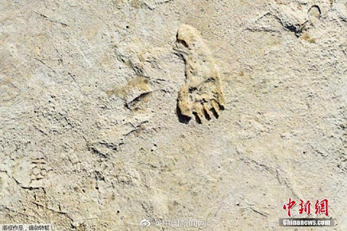 美国发现北美最古老人类脚印 距今约23000年