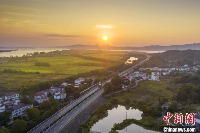 在金色的水稻里、波光粼粼的长江与鄱阳湖、和远山的映衬下,宛如一幅美丽的田园秋色图。 祝兴勇 摄