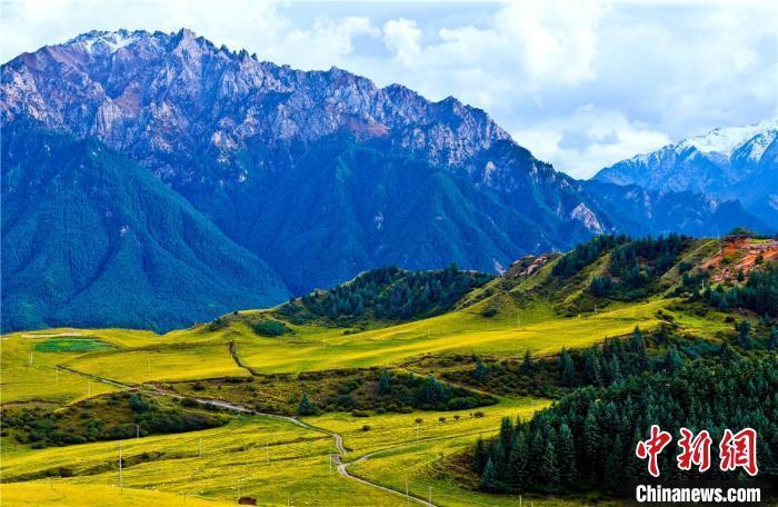 图为祁连山区秋色。  王将 摄