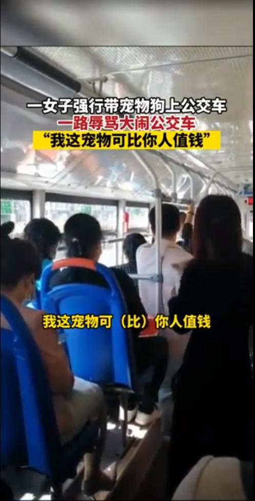 """女子带狗上公交叫嚣""""比人值钱"""" 当地警方:其患有精神分裂"""