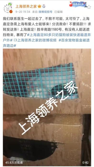 上海领养之家微博截图。