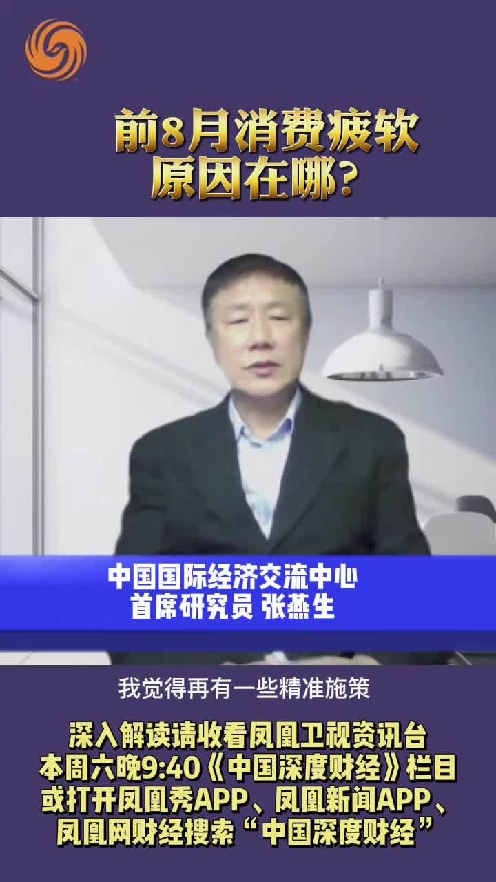 张燕生:前8月消费疲软原因在哪?