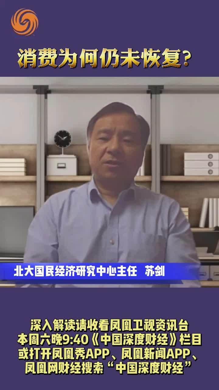北京大学国民经济研究中心主任苏剑:消费为何仍未恢复?